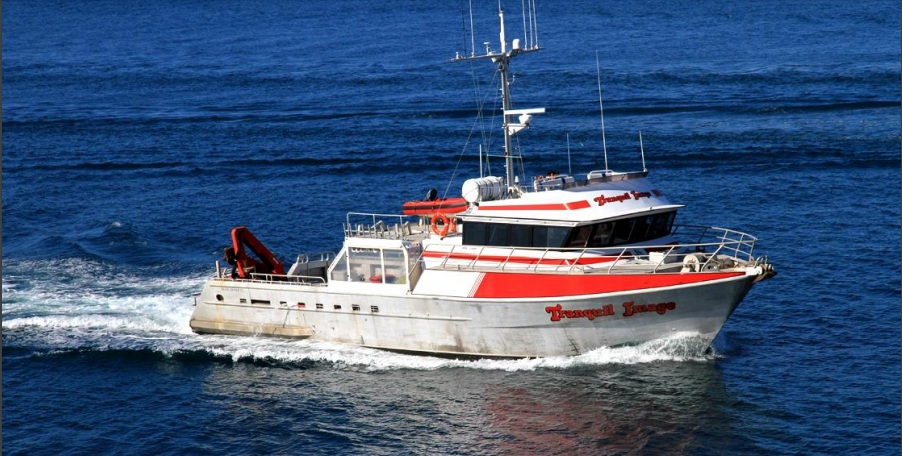 23 Meter Length Survey Vessel