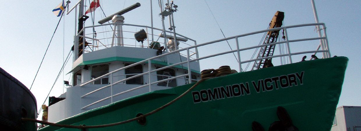 78 Feet  Dominion Victory